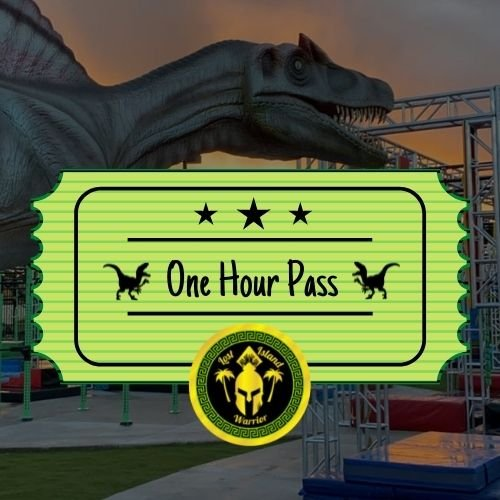 1 HOUR PASS AGES: 12 UNDER/13 UP